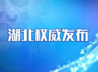 武汉市召开领导干部大会 应勇出席并讲话  王忠林同志任武汉市委书记
