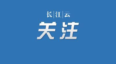 武汉医保公布18条措施服务疫情防控和日常医疗保障