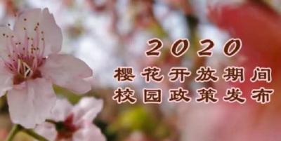 """官宣!武大樱花开放期间校园严格封闭 将开放""""云赏樱""""通道"""