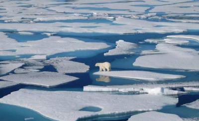 世界气象组织:全球变暖势头不变 未来5年可能再破纪录