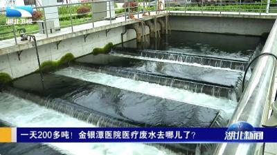 一天200多吨!金银潭医院医疗废水去哪儿了?