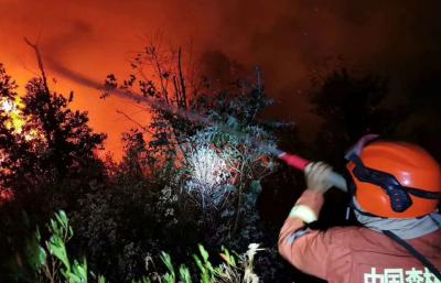 四川西昌山火的牺牲者与幸存者:有人妻子刚怀孕,有人4个孩子都没成年