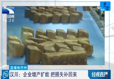 汉川:企业增产扩能 把损失补回来