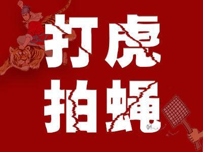 福建省委常委、副省长张志南被查