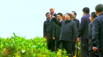 时政微纪录丨习近平总书记陕西行