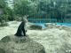 """武漢動物園的小動物們""""復工""""啦!"""