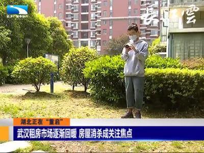 武汉租房市场逐渐回暖 房屋消杀成关注焦点
