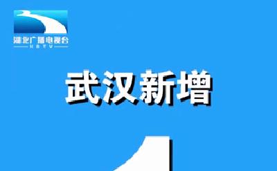 武汉新增1例境外输入病例