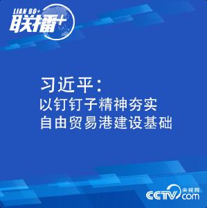 习近平:以钉钉子精神夯实自由贸易港建设基础