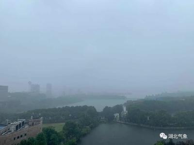 新一轮大到暴雨上线!湖北这些地方雨势较强!