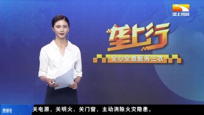 """政银企三方""""面对面""""为巾帼企业纾困解难"""