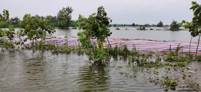 洪湖:抢排渍水 17台大型水泵正加紧安装