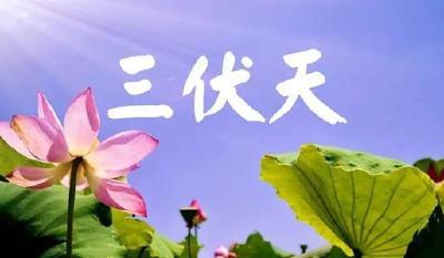 """武汉7月16日迎40天""""加长版""""三伏天 专家提醒:做好防护远离""""心梗"""""""