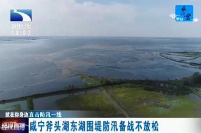 咸宁斧头湖东湖围堤防汛备战不放松