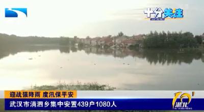 迎战强降雨 度汛保平安丨武汉市消泗乡集中安置439户1080人