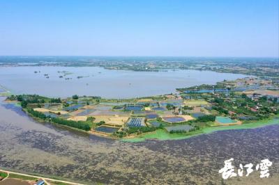 又一国家湿地公园今年年底将在荆州建成
