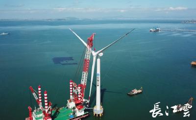 国内首台!单机容量亚太最大!这座海上风机在三峡福清兴化湾风电场成功并网发电
