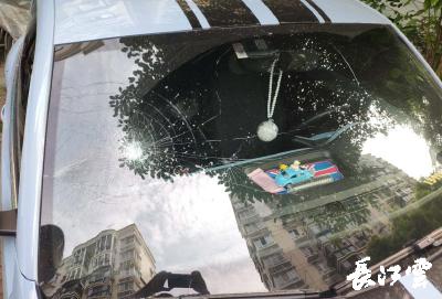 男子因纠纷邀人砸车泄愤 民警连续作战快速将作案团伙一网打尽