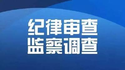 黑龙江省国资委原党委副书记、主任赵杰接受审查调查