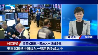 长江新闻号 | 苏晓晖:美国的举动有违公平竞争原则