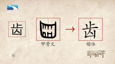 【品味汉字】奇妙的汉字:齿