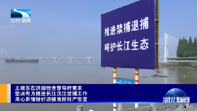 王晓东在洪湖检查督导时要求 坚决有力推进长江汉江禁捕工作 用心用情做好退捕渔民转产安置