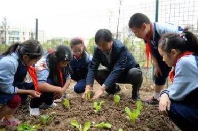 湖北省中小学劳动教育课每周不少于1课时,完成情况将作为升学参考依据