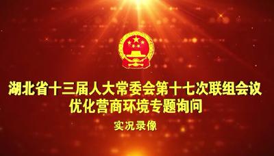 湖北省人大常委会举行优化营商环境专题询问