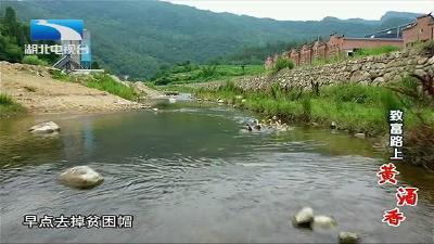 【大山的回答】:房县:致富路上黄酒香