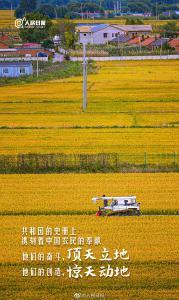 中国农民丰收节,一起致敬亿万农民