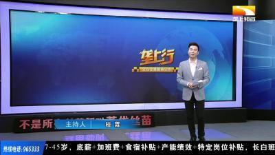 """科技赋能 湖北争当长江流域猕猴桃产业""""领头羊"""""""