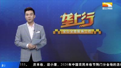 """谢睿:刚正不阿 勇当纪检战线""""尖兵"""""""