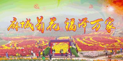 等你来游!麻城文旅资源云上推介会成功举办,精品旅游线路发布!