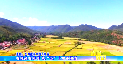 直通襄阳 | 襄阳:全力建设中国有机谷
