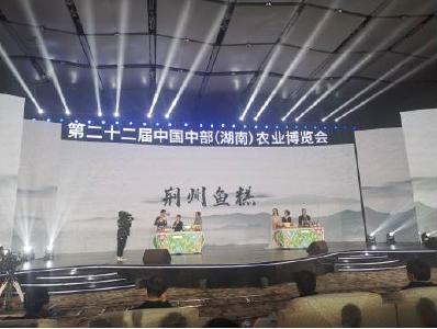 荆州鱼糕、随州香菇......荆楚味道喷香亮相中国中部农博会
