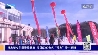 """神农架今冬滑雪季开启 吸引5000余名""""滑友""""雪中驰骋"""