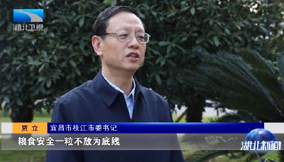 对话主官 | 枝江市委书记贾立:以推动城乡融合发展为目标 做好规划文章