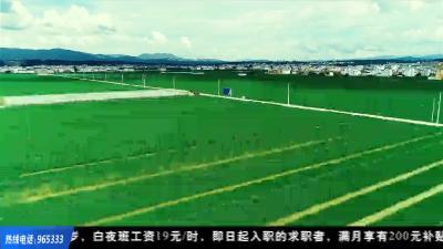 荆楚益农 | 荆楚明星农产品 组团亮相农交会