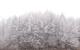 好美!恩施的雪!