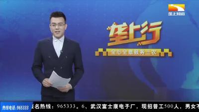 兴文化品牌 助湖北重振:中铁大桥局武汉桥梁传媒有限公司