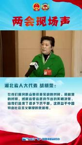 Vlog丨湖北省人大代表 胡明荣:干部下沉社区,彰显社会主义制度的优越性