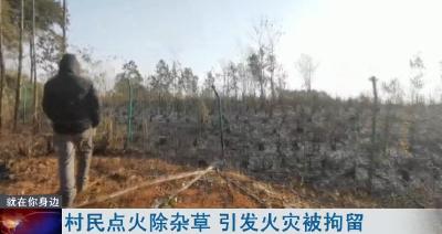 村民点火除杂草 引发火灾被拘留