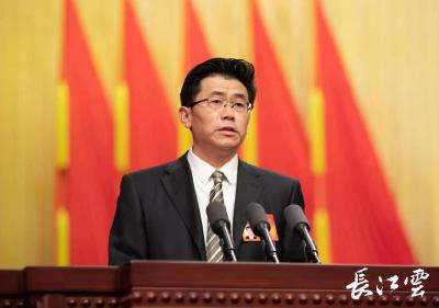 湖北省政协常委叶春松:加快数字湖北建设的几点建议
