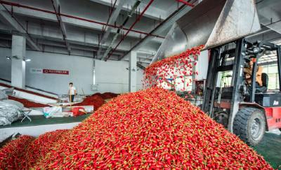 长江时评:中国GDP破百万亿是复兴底气的证明