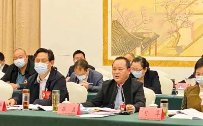 湖北省人大代表苏勇:用5A级的标准建设恩施