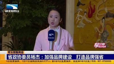 省政协委员杨杰:加强品牌建设 打造品牌强省
