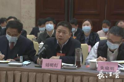 """湖北省人大代表刘明灯:抢抓新机遇 念好""""回归工程""""经"""