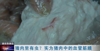 猪肉里有虫?实为猪肉中的血管筋膜