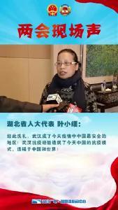 Vlog丨湖北省人大代表叶小缅:武汉抗疫经验造福了中国和世界