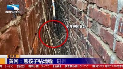 黄冈:熊孩子钻墙缝   进得去出不来